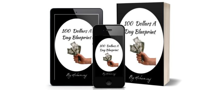 100 dollars a day blueprint review